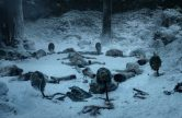 game of thrones 101 winter is coming (1)