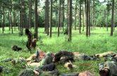 The Walking Dead: Season 4 Part 2 Trailer